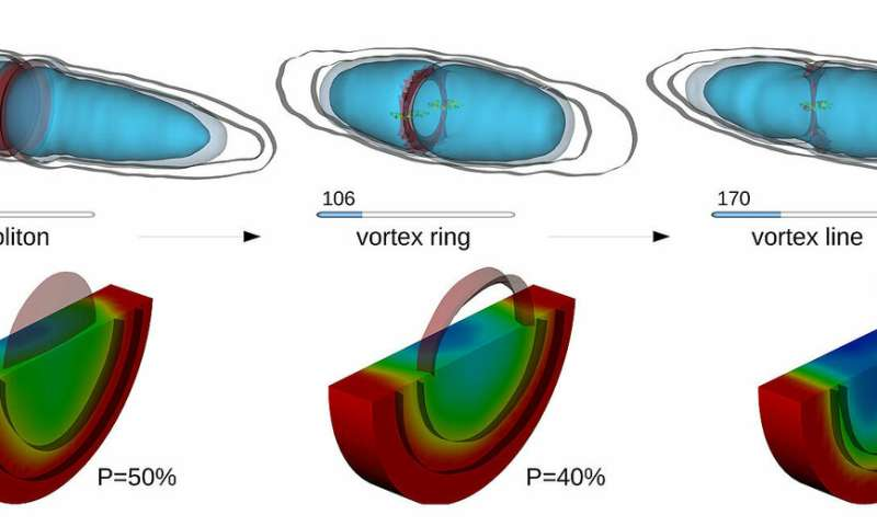 New simulation methods to visualise quantum effects in superfluid fermions