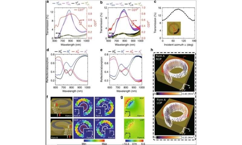 Polarization-encryption based data storage in 3-D Janus plasmonic