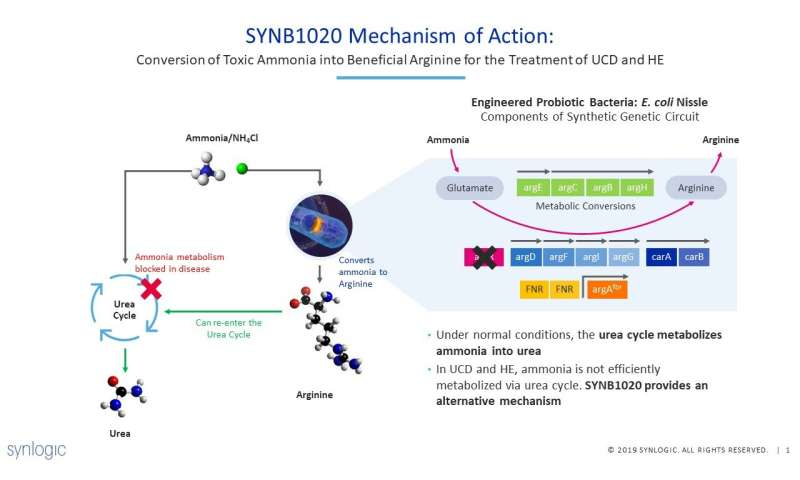 Publication of data for SYNB1020 a potential treatment for hyperammonemia