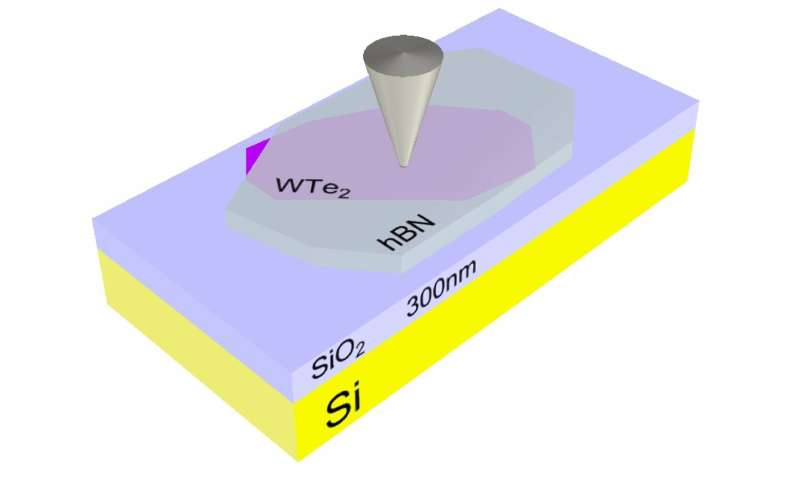 Scientists image conducting edges in a promising 2D material