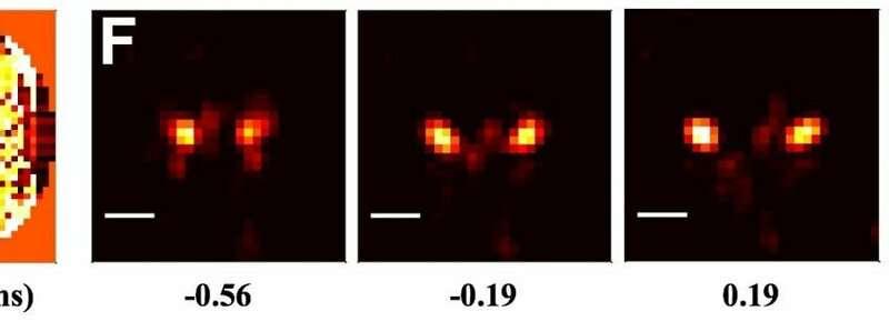 Shaping light lets 2D microscopes capture 4D data