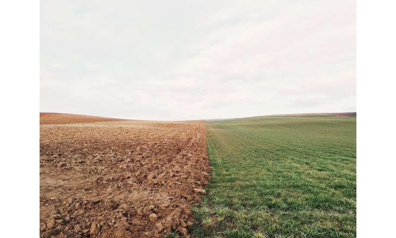 Drought spells changes for soil microbes