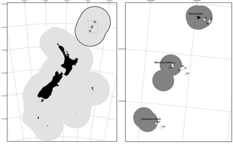 Squid team finds high species diversity off Kermadec Islands, part of stalled marine reserve proposal