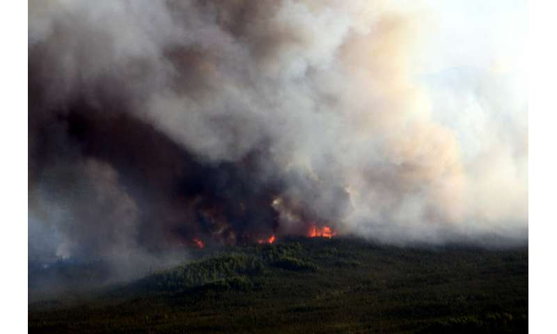 UM researchers study Alaska forest fires over past 450 years