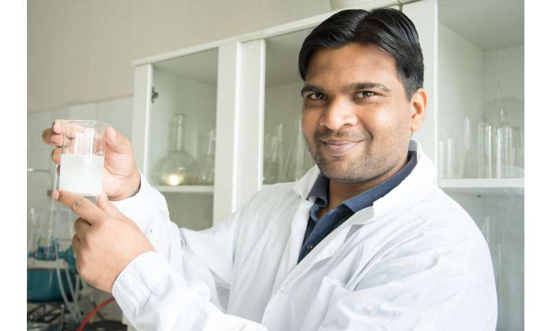 Researchers Are Developing Eco-Dishes and Improving the Properties of Cornstarch for Food Industry
