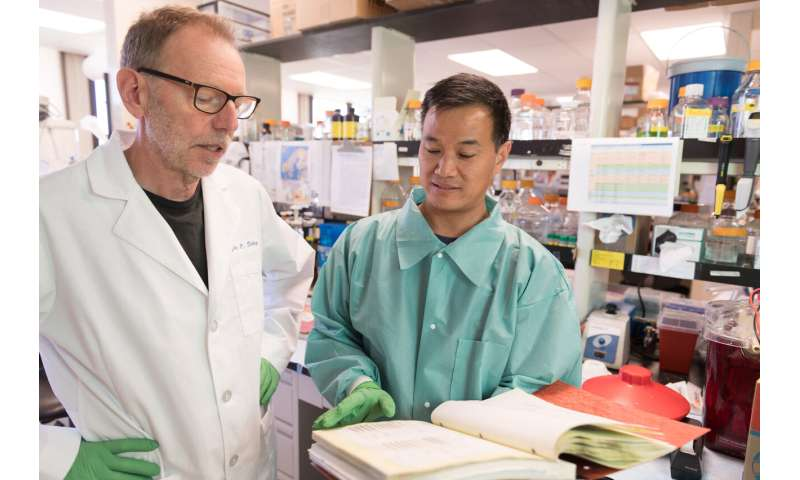 In Breakthrough Researchers Detect >> Breakthrough In Chronic Wasting Disease Research Reveals Distinct