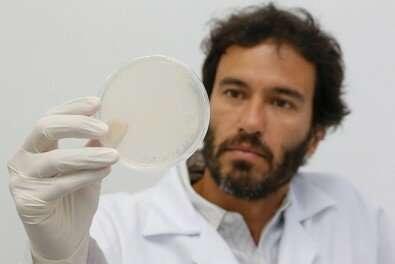 Researchers create SAMβA, a new molecule to treat heart failure