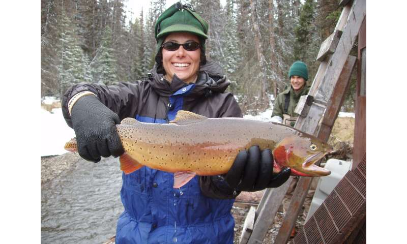 Researchers find broad impacts from lake trout invasion in Yellowstone