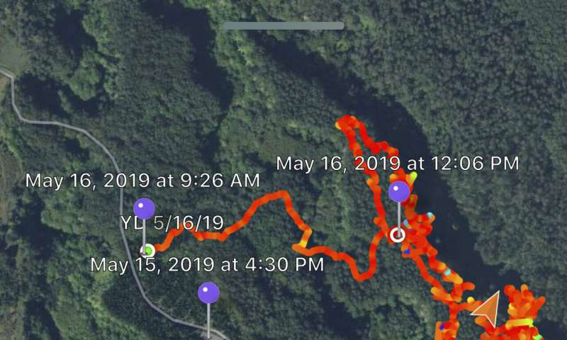 Tech makes it easier to search wilderness for missing people