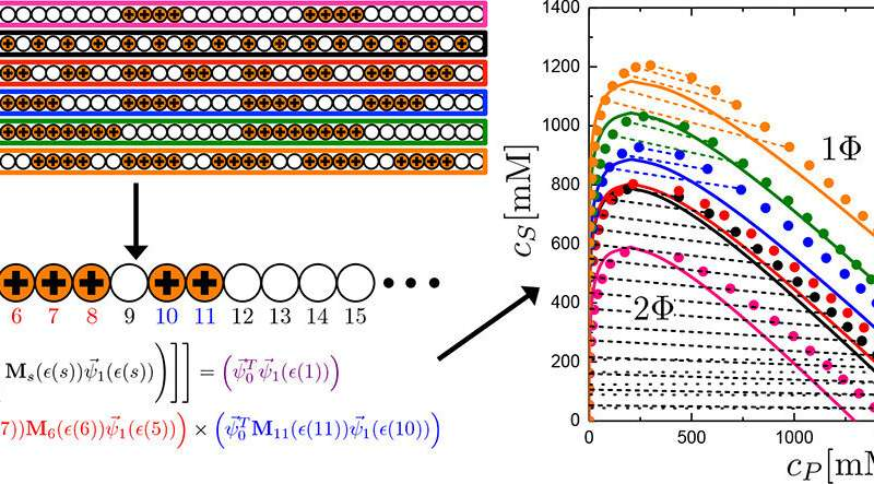 Researchers can now predict properties of disordered polymers