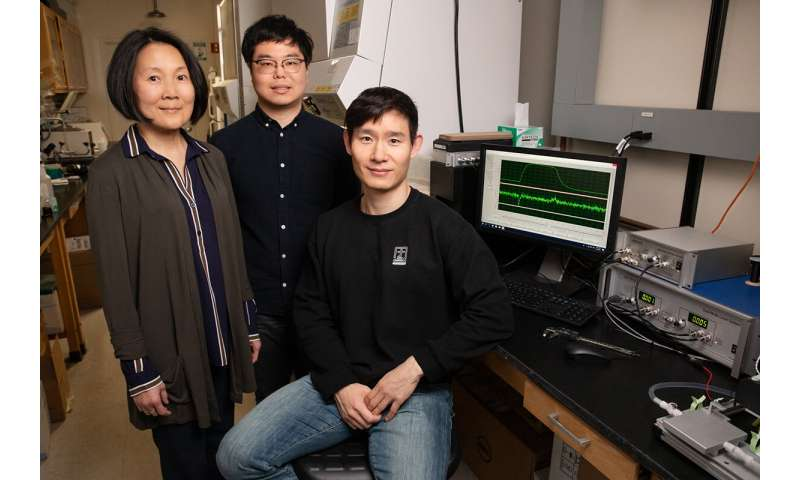 Researchers find protein that suppresses muscle repair in mice