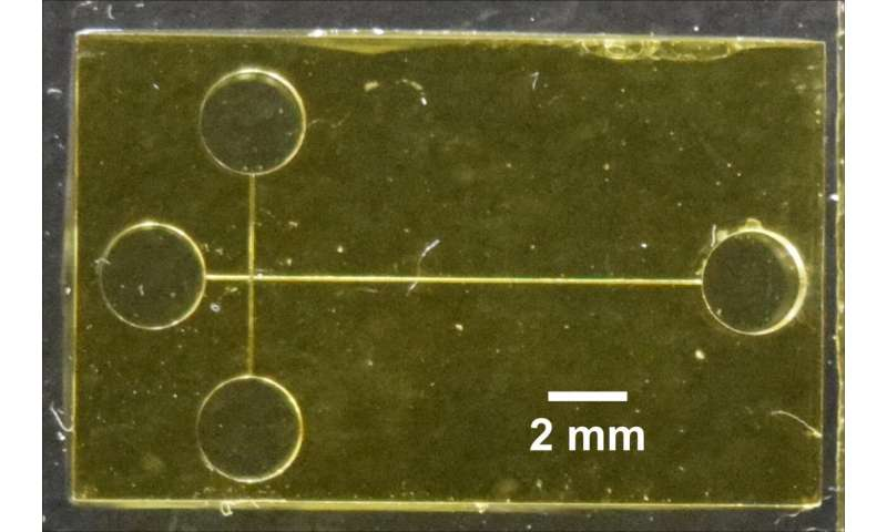 3D-printed device detects biomarkers of preterm birth