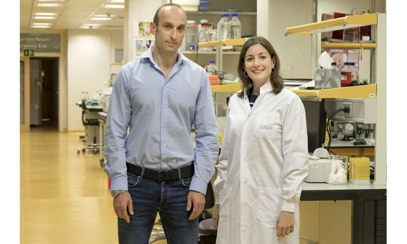CNIO researchers discover a new way to protect against high-dose radiation damage