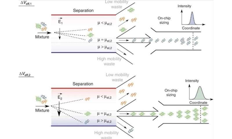 **Microfluidics: 2D fingerprints of heterogenous proteins in solution