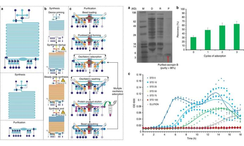 Therapeutics-on-a-chip (TOC) | Manufacturing synthetic proteins on a chip for point-of-care therapeutics.