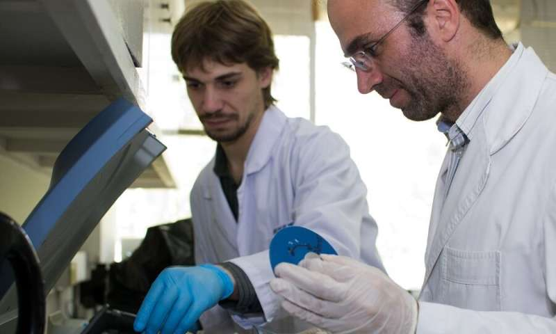 Researchers show that the composition of human skin microbiome can be modulated