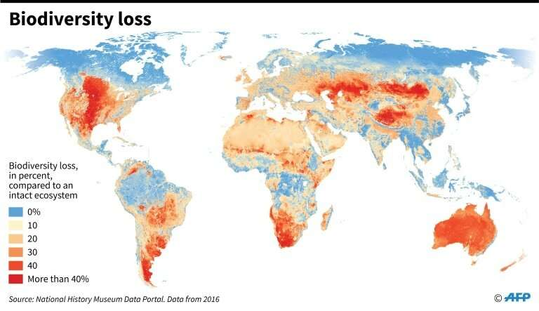 Biodiversity loss around the world measured in percentage compared to an intact ecosystem