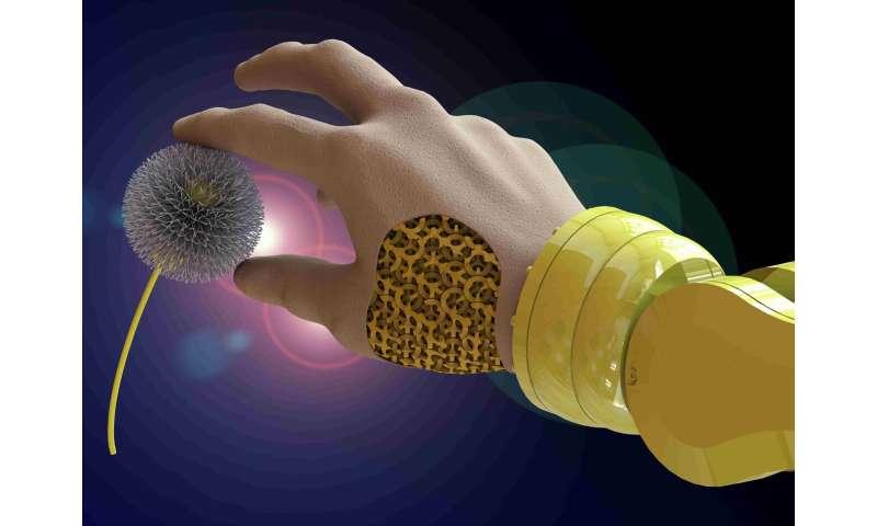 Programmable actuators show the great potential of soft robotics. TU researchers