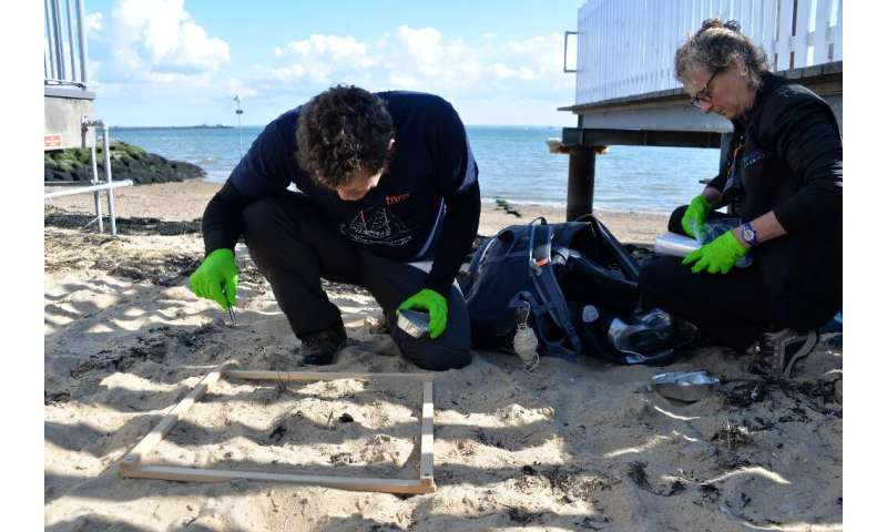 Researchers Valerie Barbe (R) and Boris Eyheraguibel, members of Tara's microplastics expedition, look for plastics in the sand