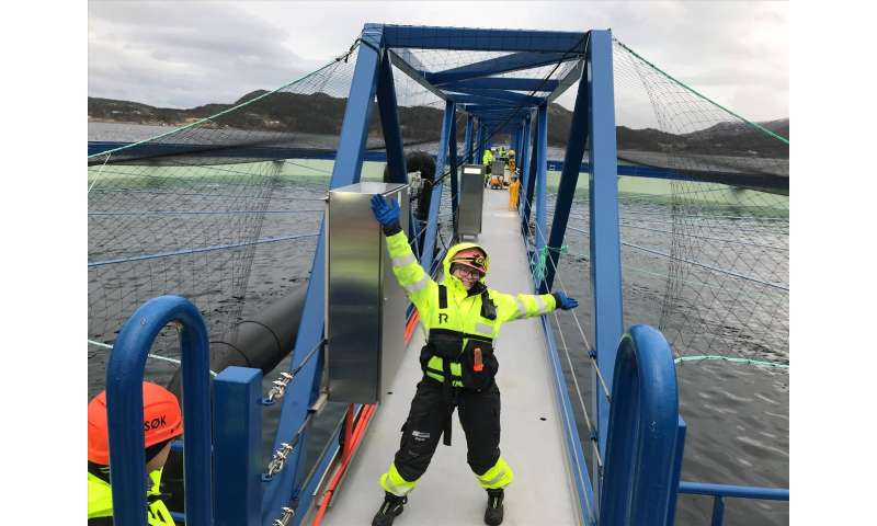 A new, escape-proof fish cage for a lice-free salmon farm