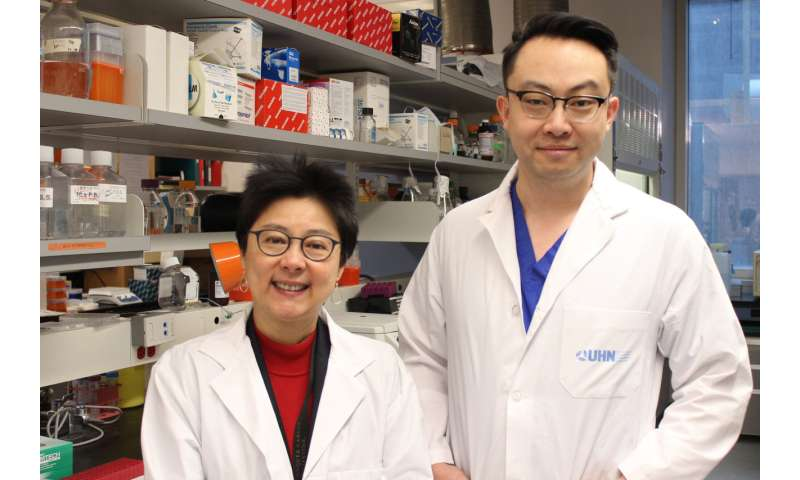 New approach may curb treatment-related skin fibrosis in cancer patients
