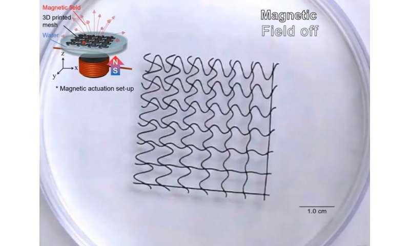 Researchers create 3-D-printed soft mesh robots