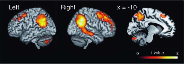 How the brain 'mentalizes' cooperation
