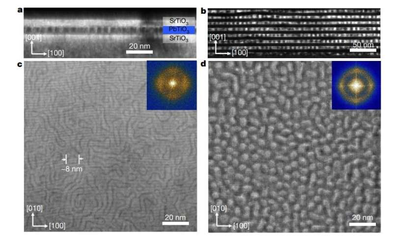 **Researchers report observation of room-temperature polar skyrmions
