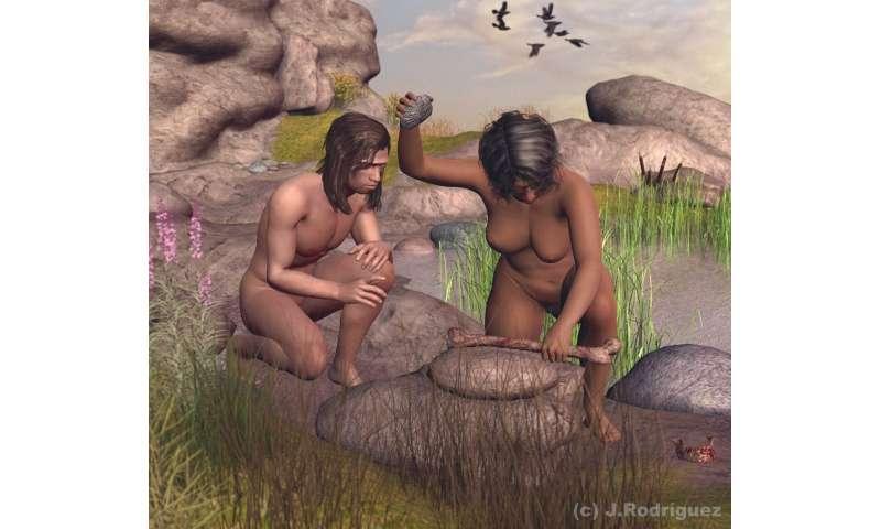 Cannibalism was profitable for Homo antecessor