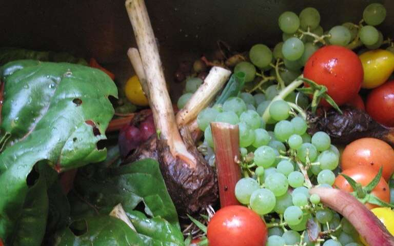 Fighting food waste by finding ways to use the useless