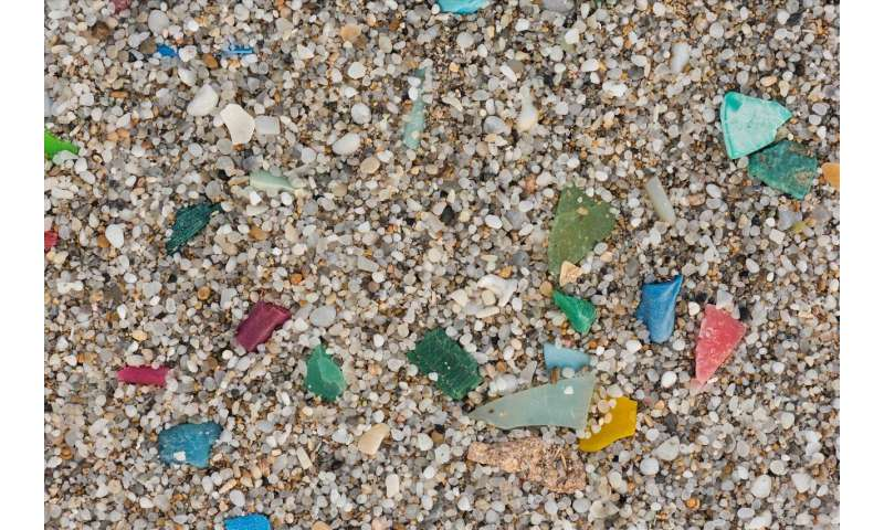 Microplastics in freshwaters