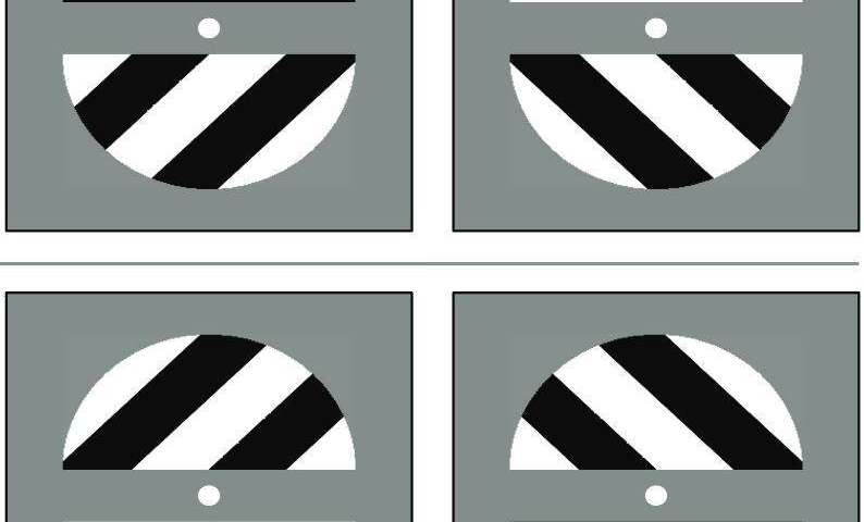 Optical illusions reveal regular waves of brain activity enable visual feature integration