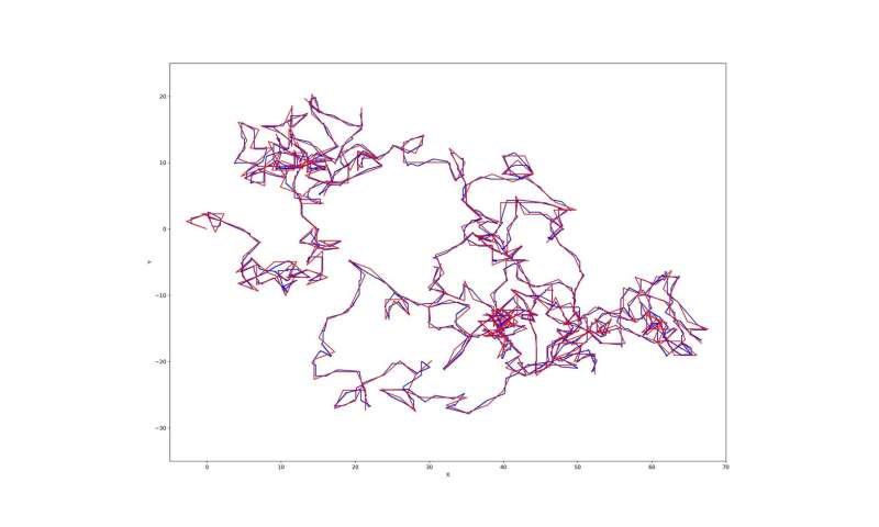 Evolving neural networks with a linear growth in their behavior complexity