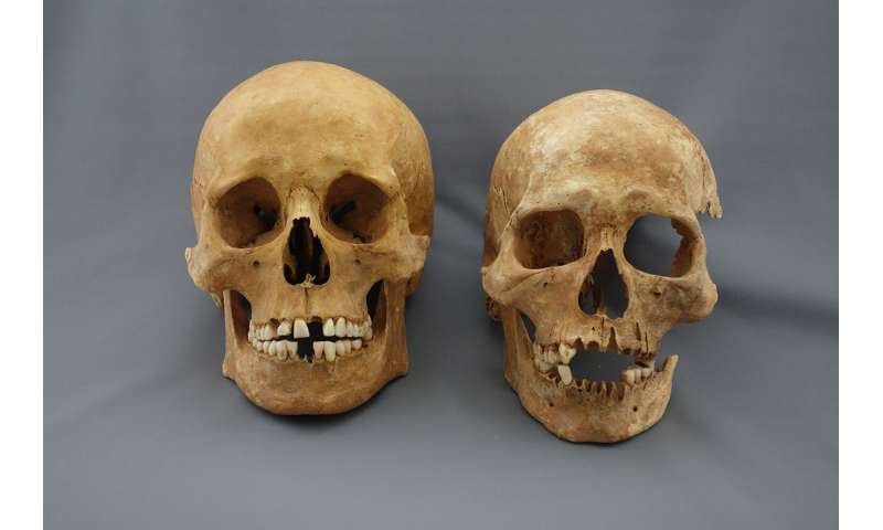 Researchers discover previously unknown level of diversity in Justinianic Plague