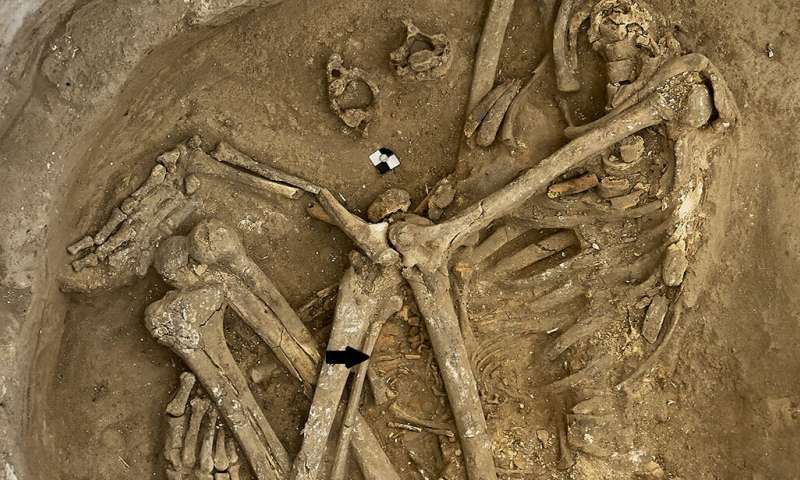 Çatalhöyük: 9,000 years ago, a community with modern urban problems
