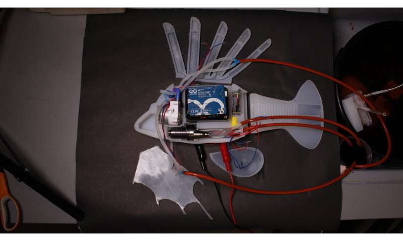 Robot circulatory system powers possibilities