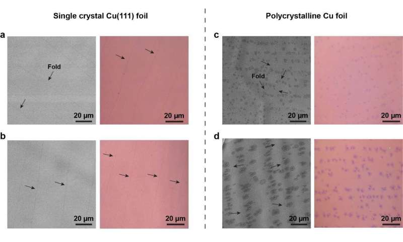Graphenes now go monolayer and single crystalline