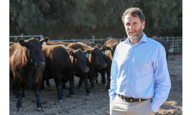 Study shows potential for reduced methane from cows