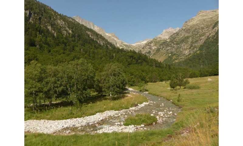 Spain's natural river basins network should expand to protect biodiversity in rivers
