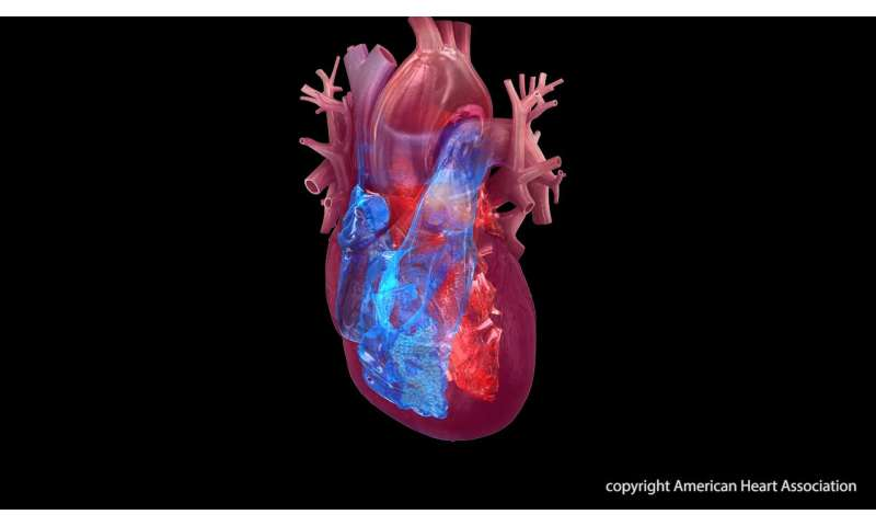 Broken heart syndrome linked with cancer