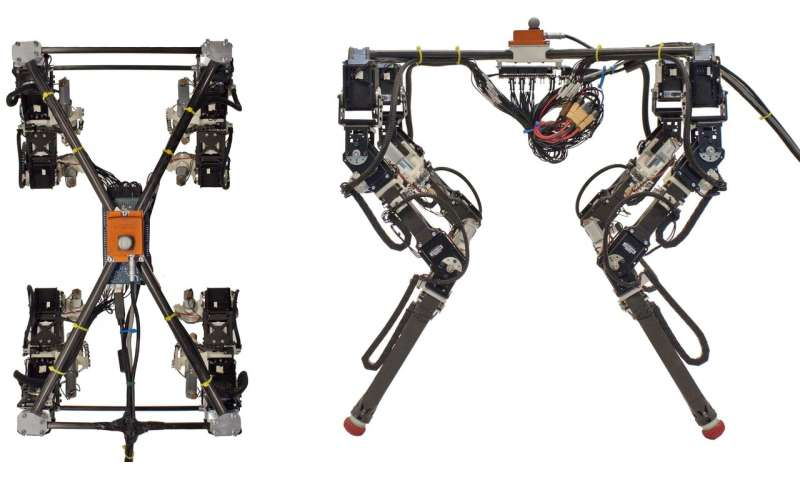 A new method to enable robust locomotion in a quadruped robot