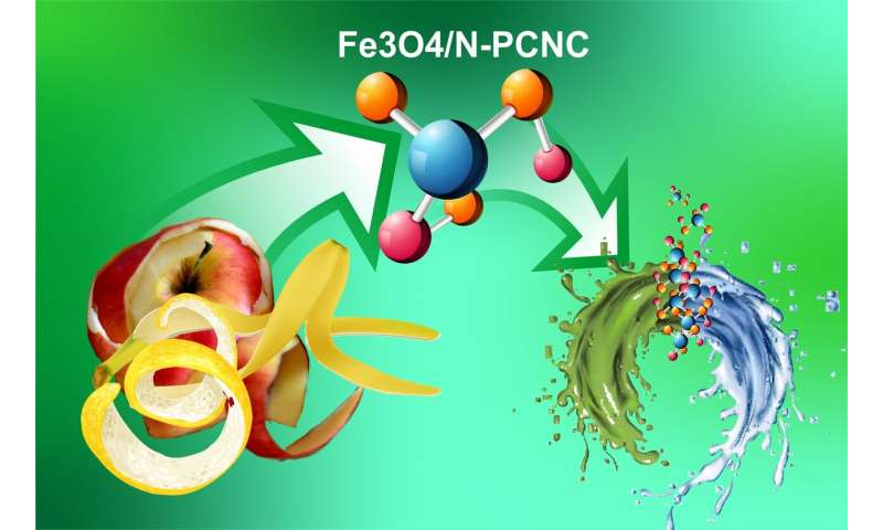 RUDN Chemists Developed Eco-Friendly Nanocomposites from Fruit and Berry Peel for Water Purification, Qualitative Analysis, and