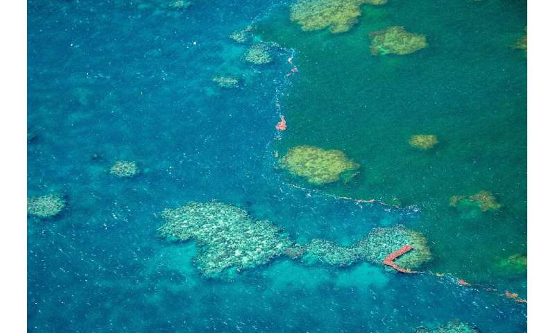 Conservationists warn the controversial mine would threaten the World Heritage-listed Barrier Reef