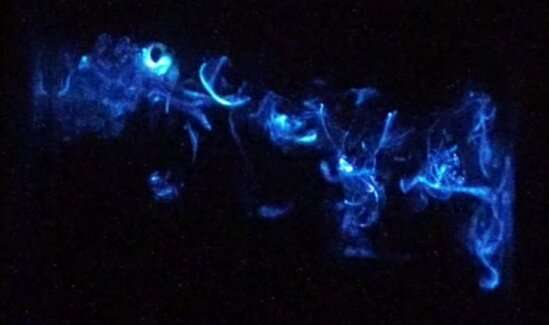 Scientists discover two mechanisms at work in crustacean's dazzling light displays