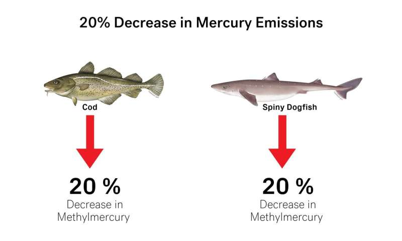Climate change likely to increase human exposure to toxic methylmercury