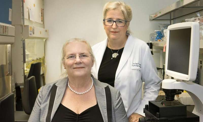 Addicted to ran, ovarian cancer cells stop moving when deprived