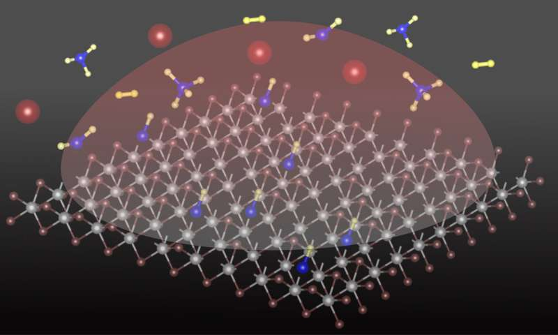 Adding a carbon atom transforms 2-D semiconducting material
