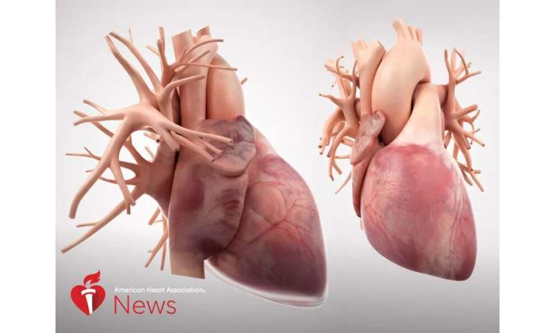 AHA: 7 things that can affect the heart -- and what to do about them