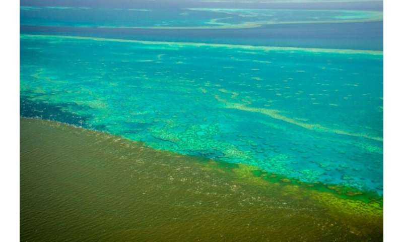 A handout photo shows shows sediment caused by unprecedented rain and flooding approaching the the Great Barrier Reef