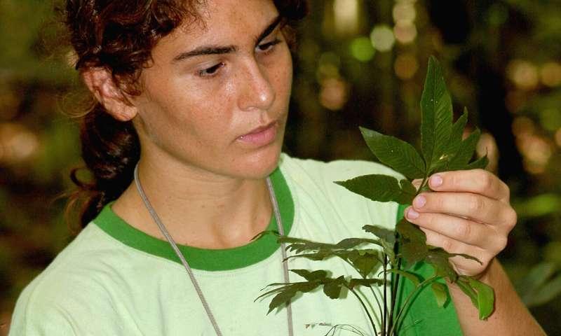 Amazonian soils mapped using indicator species